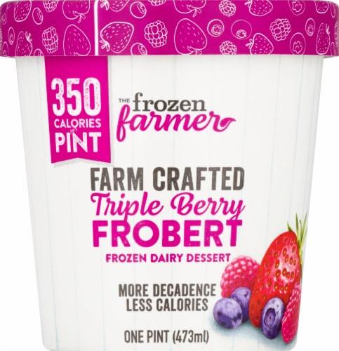 The Frozen Farmer Triple Berry Frobert Frozen Dairy Dessert Perspective: front