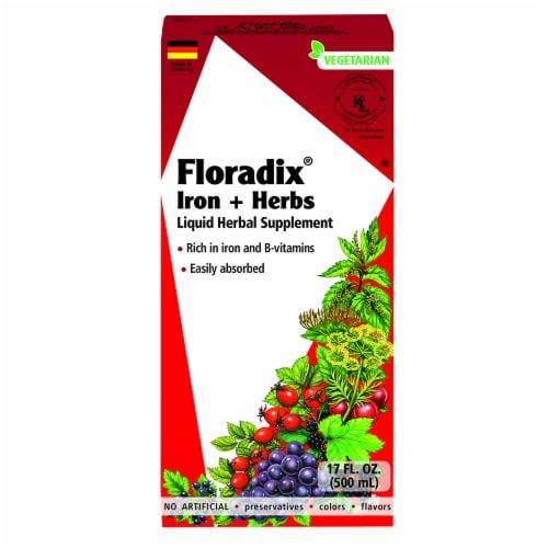 Floradix Iron + Herbs Vegetarian Liquid Herbal Supplement Perspective: front