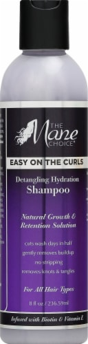 The Mane Choice Easy On The Curls Shampoo Perspective: front