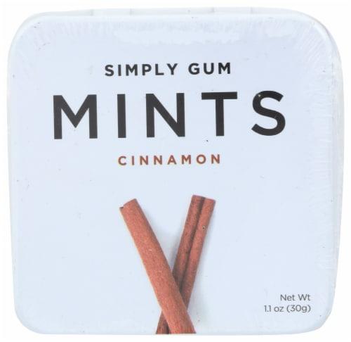 Simply Gum Cinnamon Mints Perspective: front