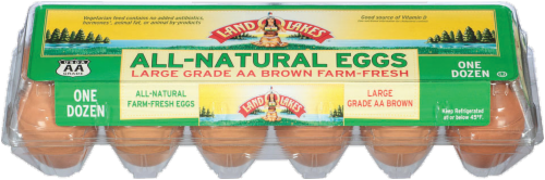 Land O' Lakes All-Natural Grade AA Large Brown Eggs Perspective: front