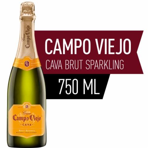 Campo Viejo Cava Brut Reserva Wine Perspective: front