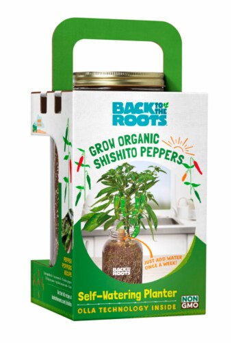 Back to the Roots 7790140 Self-Watering Planter Shishito Peppers Grow Kit Perspective: front