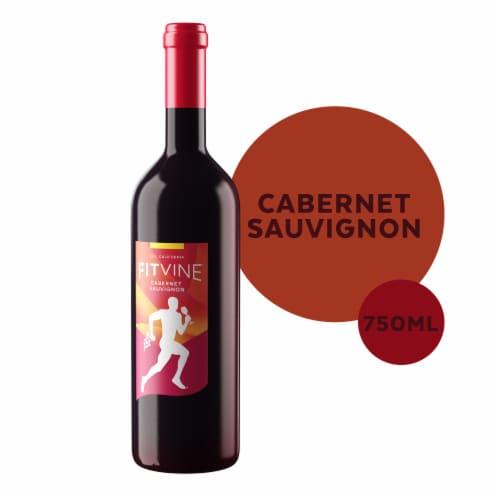 Fitvine Cabernet Sauvignon Red Wine Perspective: front