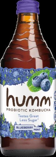 Humm Blueberry Mint Kombucha Perspective: front