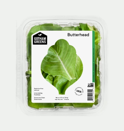 Gotham Greens Butterhead Lettuce Perspective: front