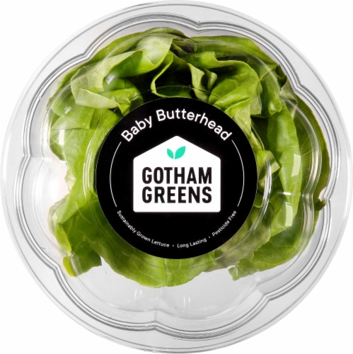 Gotham Greens Baby Butterhead Lettuce Perspective: front