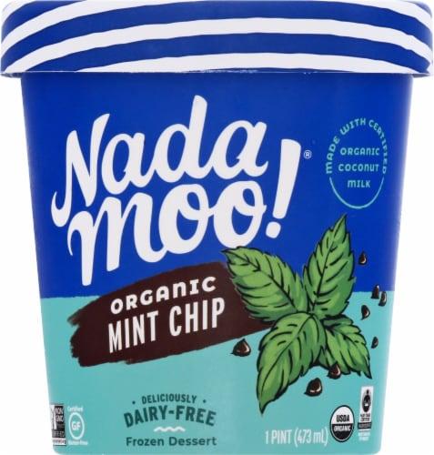 Nadamoo Lotta Mint Chip Dairy-Free Frozen Dessert Perspective: front