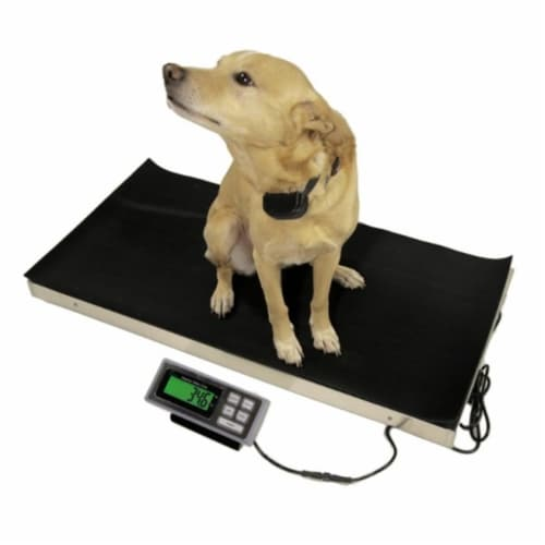 Tree LVS700 Large Veterinary Scale, 700 x 0.2 lbs Perspective: front