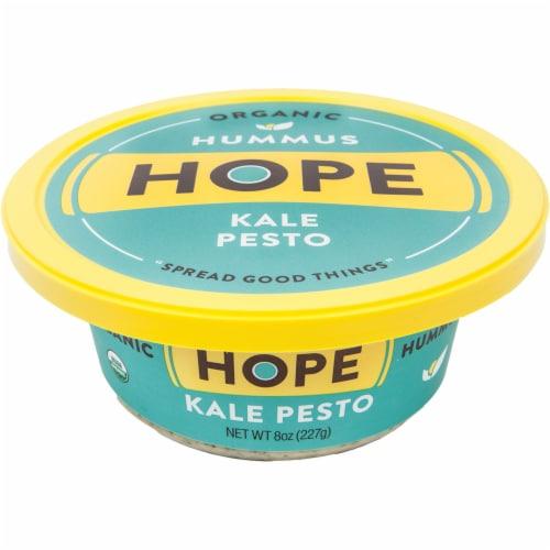 Hope Foods Organic Kale Pesto Hummus Perspective: front