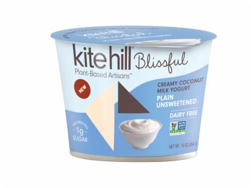 Kite Hill Blissful Plain Unsweetened Creamy Coconut Milk Yogurt Perspective: front