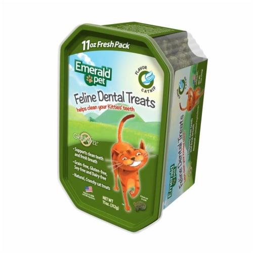 Emerald Pet 856916006175 11 oz Feline Dental Treat Tub Catnip Perspective: front