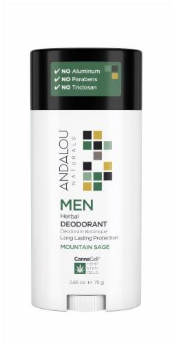 Andalou Naturals Men Mountain Sage Herbal Deodorant Perspective: front