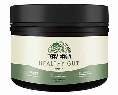 Terra Origin  Healthy Gut   Mint Perspective: front