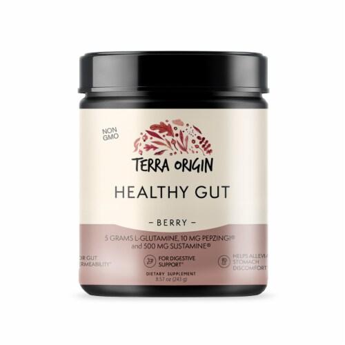 Terra Origin Healthy Gut Berry Powder Perspective: front