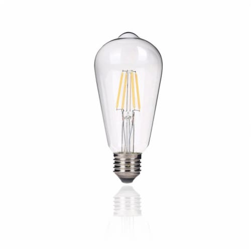 Vintage Style 40 Watt Equivalent Warm White ST64 Dimmable LED Light Bulb Perspective: front