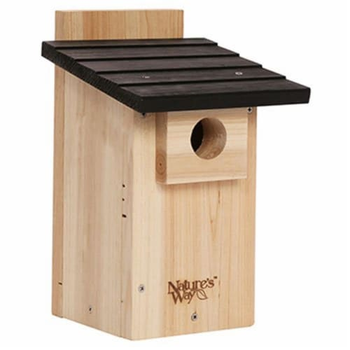 Natures Way Bird Products Bluebird Viewing House Perspective: front
