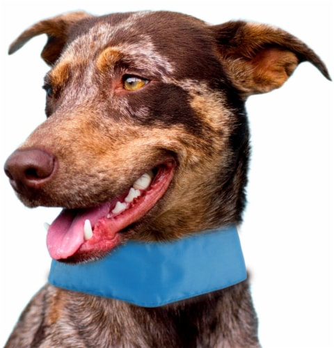 Pet Life PTCL1BL Summer Cooling Dog Neck Wrap, Blue - One Size Perspective: front