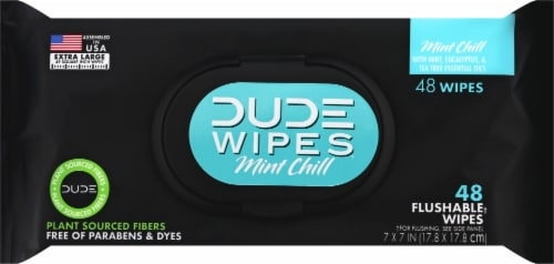 DUDE Wipes Mint Chill Flushable Wipes Perspective: front