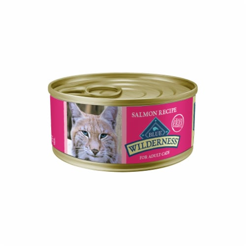 Blue Wilderness Salmon Recipe Wet Cat Food Perspective: front