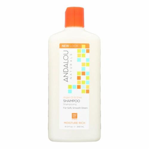 Andalou Naturals Argan Oil & Shea Moisture Rich Shampoo Perspective: front