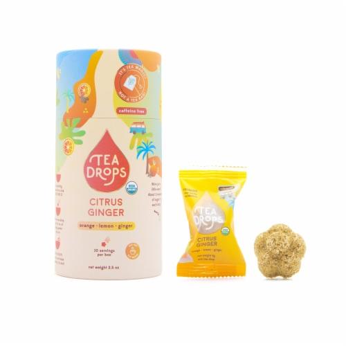 Tea Drops Organic Citrus Ginger Tea Perspective: front