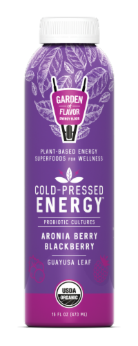 Garden of Flavor Cold-Pressed Energy Aronia Berry Blackberry Juice Perspective: front