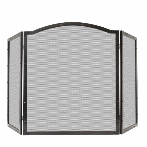 Pleasant Hearth Fortna Fireplace Screen - Black Perspective: front