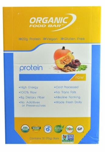 Organic Food Bar  Raw and Vegan   Pumpkin Perspective: front