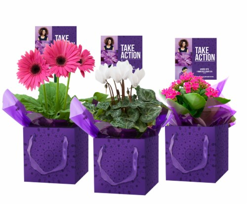 Blooming in Women's Day Gift Box - Assorted Perspective: front