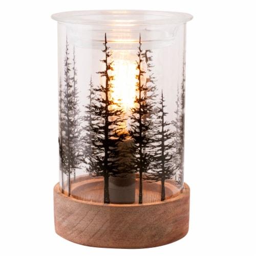 Oak & Rye Fir Grove Edison Wax Warmer - Brown/Transparent Perspective: front