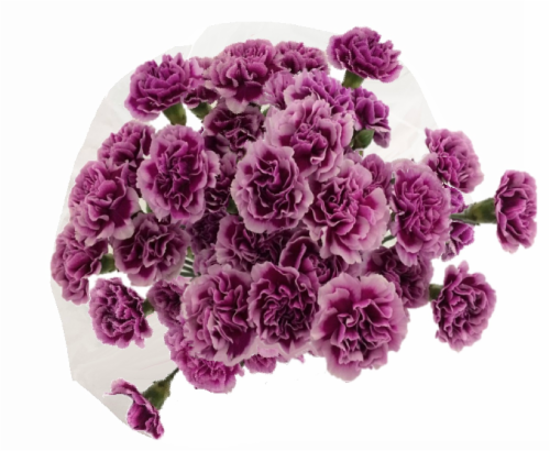 Mini Carnations Bouquet Perspective: front