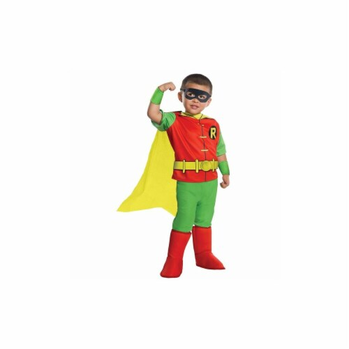 Rubies 249587 DC Comics Robin Deluxe Toddler Costume, Medium Perspective: front