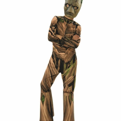Rubies 278877 Halloween Marvel Avengers Infinity War Teen Groot Boys Costume - Medium Perspective: front