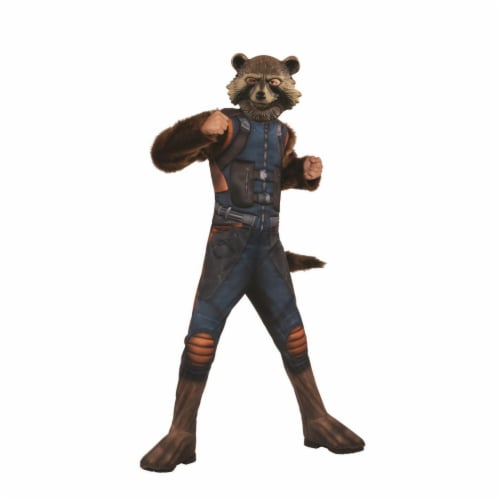 Rubies 404813 Boys Avengers Rocket Raccoon Deluxe Child Costume - Large Perspective: front