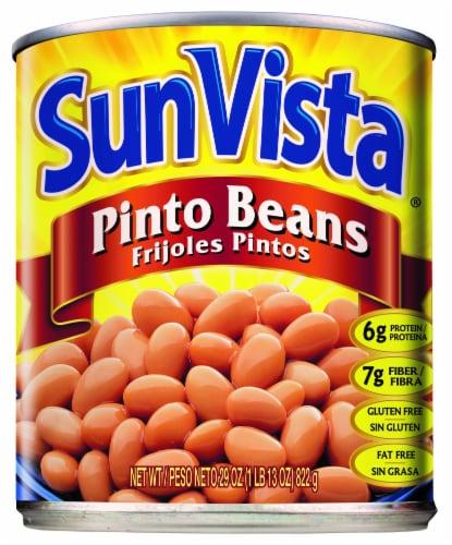 Sun Vista Pinto Beans Perspective: front