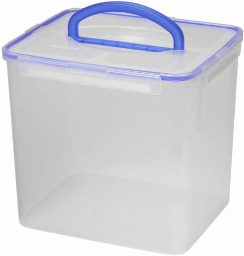 Snapware Food Storage Container with Large Handle Perspective: front