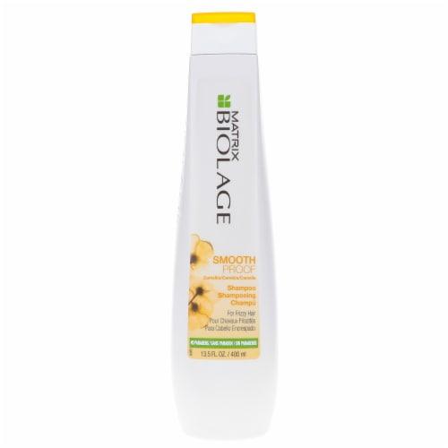 Matrix Biolage SmoothProof Shampoo Perspective: front