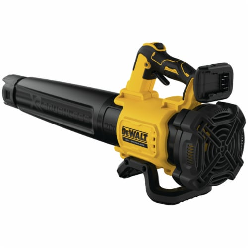 DeWalt 7006931 Max Battery Cordless Blower Perspective: front