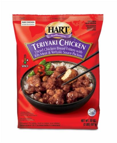 Hart Authentic Teriyaki Chicken Perspective: front