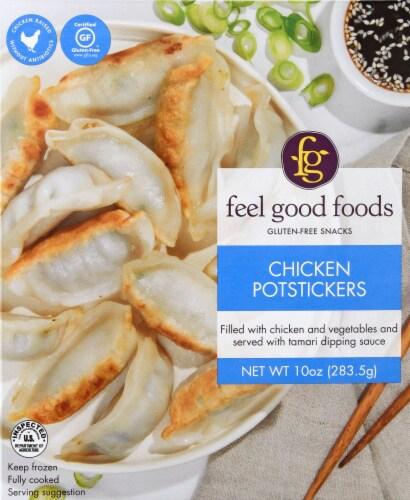 Feel Good Foods Chicken Potstickers  Dumpling Perspective: front