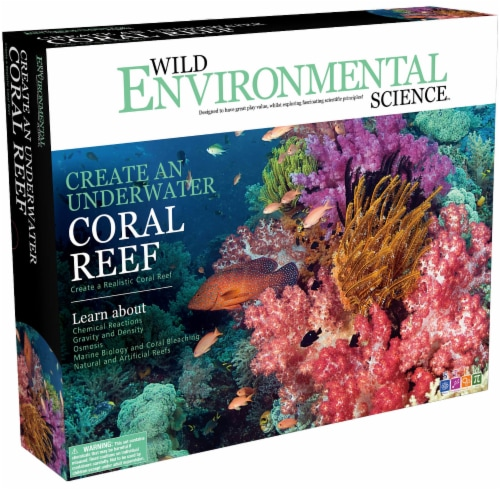 Wild Environmental Science Create An Underwater Coral Reef Science Kit Perspective: front