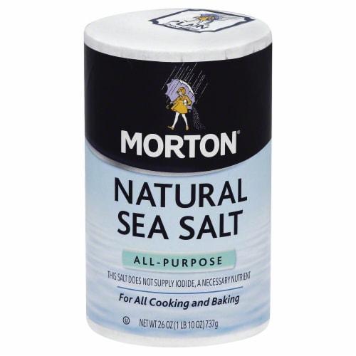 Morton All-Purpose Natural Sea Salt 26 Oz Pour Spout (Pack of 12) Perspective: front