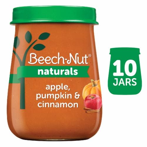 Beech-Nut Naturals Apple Pumpkin & Cinnamon Stage 2 Baby Food 10 Count Perspective: front