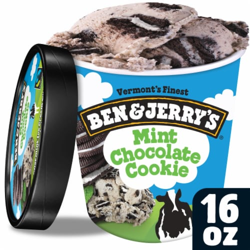 Ben & Jerry's Mint Chocolate Cookie Ice Cream Perspective: front