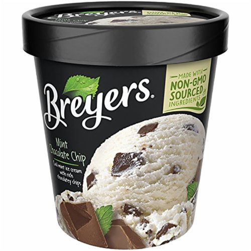 Breyers, Mint Chocolate Chip Ice Cream, Pint (8 count) Perspective: front