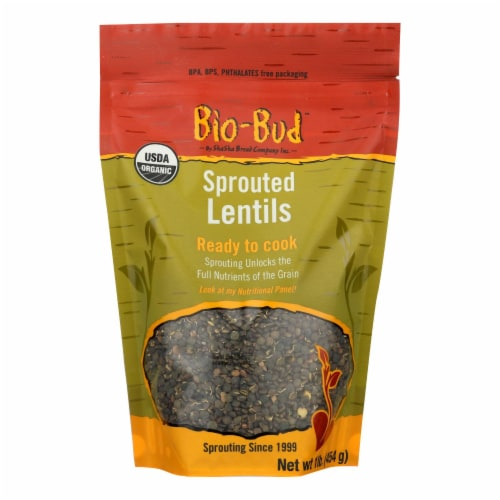 Shasha Bread - Lentils Sprouted - Case of 12 - 16 OZ Perspective: front