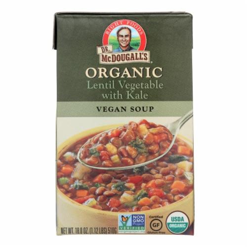 Dr. McDougall's Organic Lentil Vegetable Soup - Case of 6 - 18 oz. Perspective: front