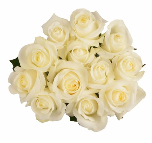 Passion Growers Dozen Fresh Cut White Roses (Approximate Delivery is 1-3 Days) Perspective: front