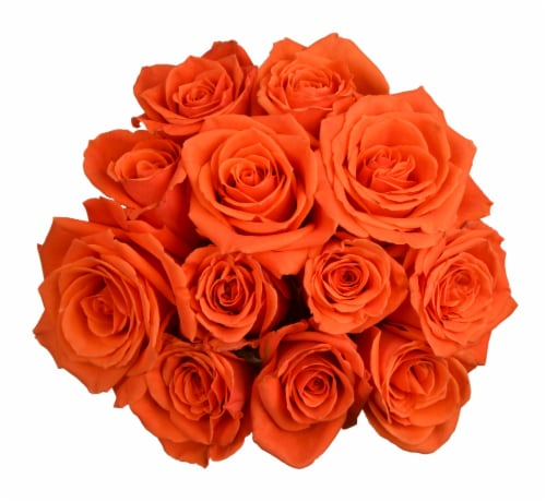 Passion Growers Dozen Fresh Cut Orange Roses (Approximate Delivery is 1-3 Days) Perspective: front